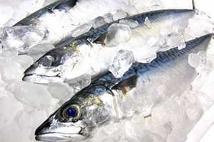 キッチンの生臭さの原因となる魚の調理